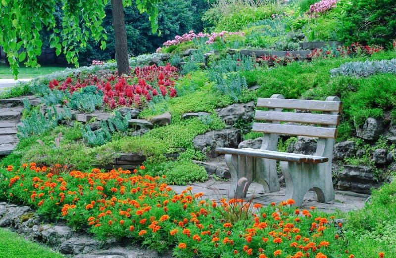 Macizos de flores, plantas decorativas en un parque fotos de archivo libres de regalías