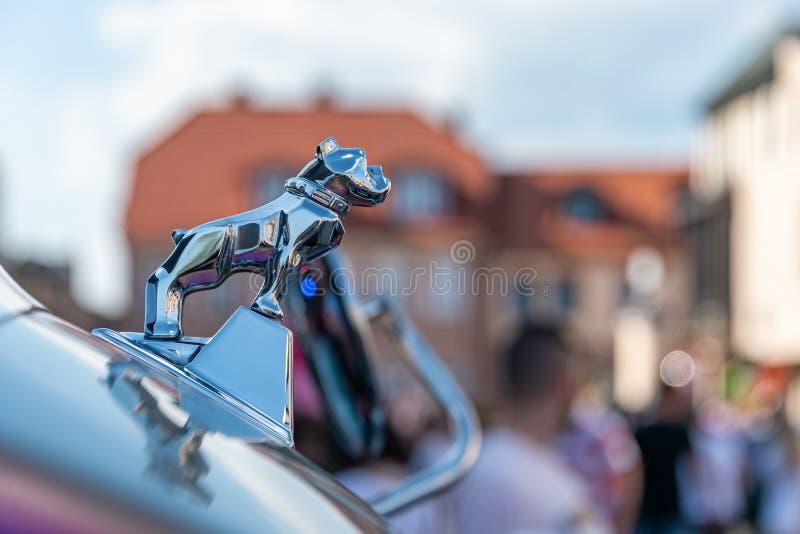 Mack卡车牛头犬原始的真正优美的Chrome装饰品 免版税图库摄影