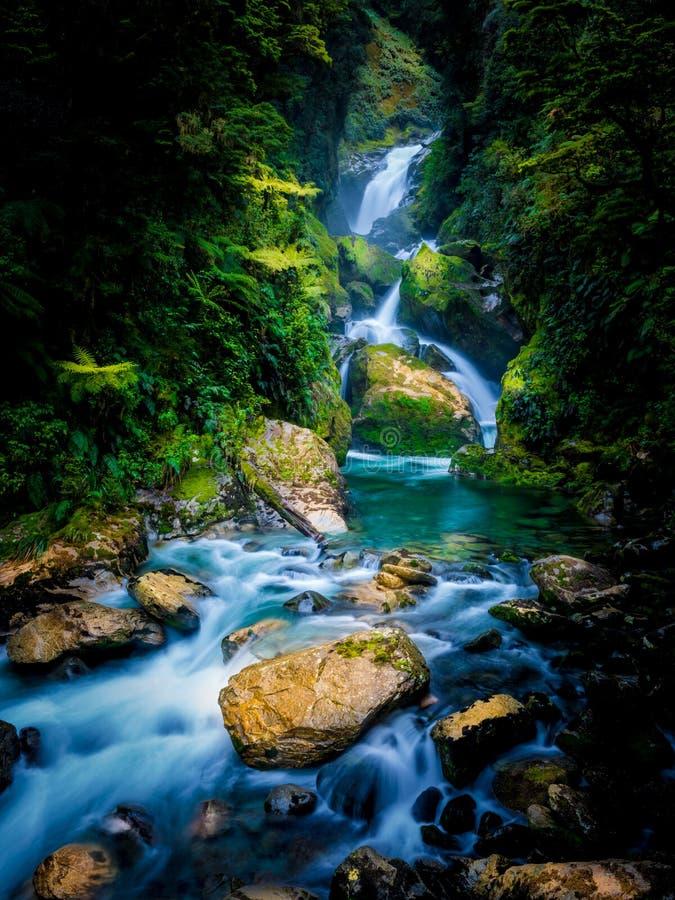 Mackay Falls en la pista de Milford, Nueva Zelanda fotografía de archivo libre de regalías
