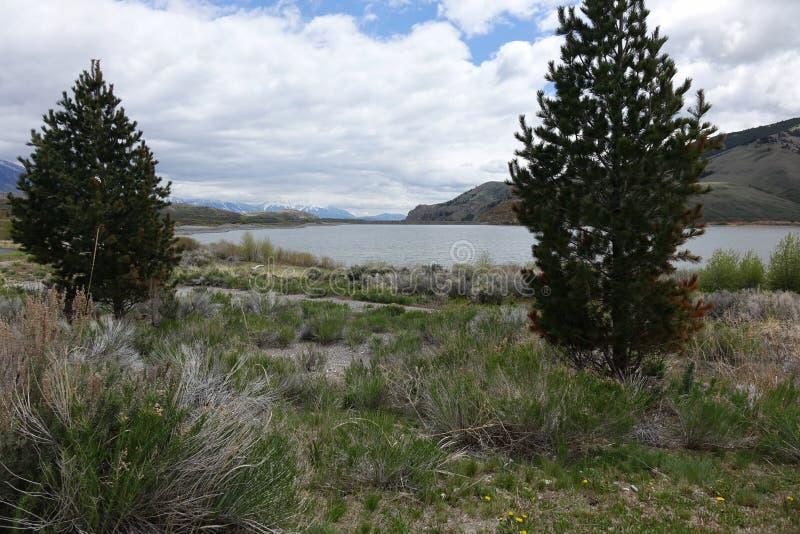 Mackay Reservoir - Idaho arkivfoto