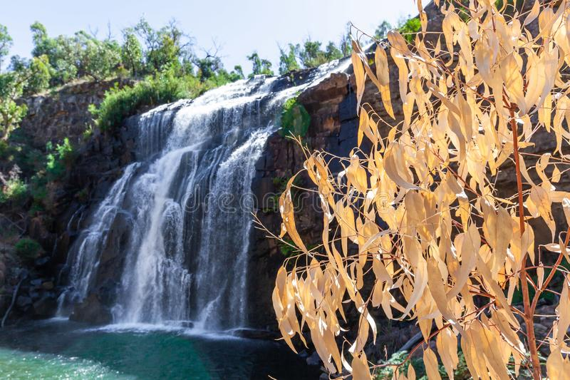 Mackenzie Falls in Grampians, Australië royalty-vrije stock afbeelding