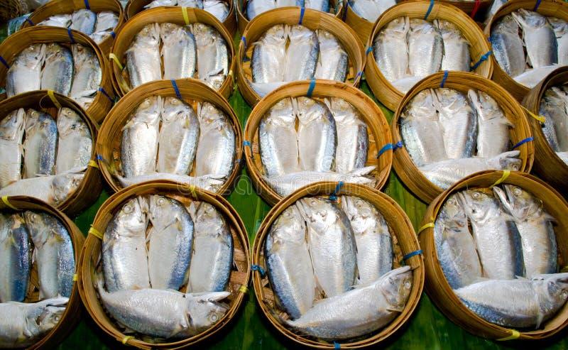 Download Mackerel stock photo. Image of catch, fisherman, fish - 23891946