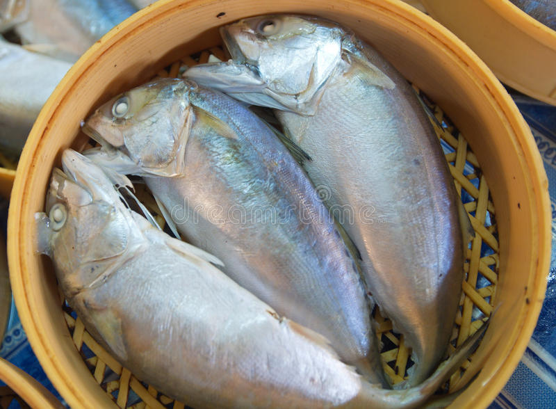Mackerel fish in the basket. Ready to sell, steamed mackerel fish in the basket stock image