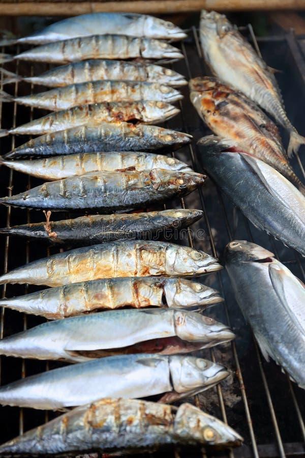 Mackerel fish fried on grill royalty free stock photos