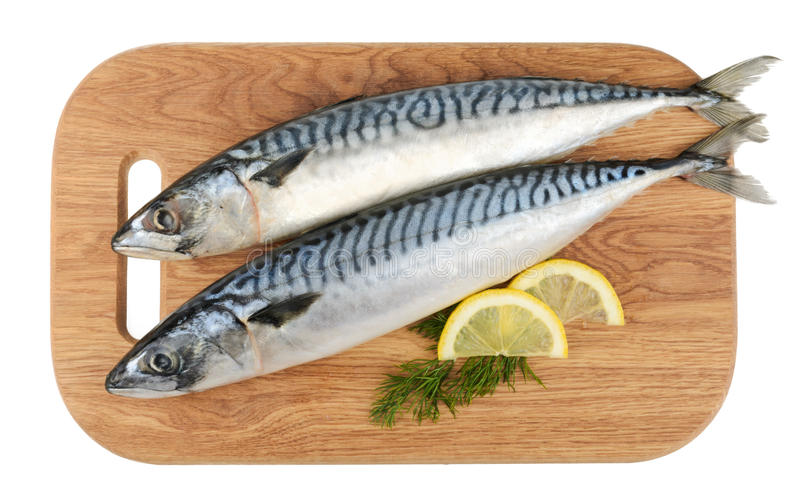 Mackerel fish on wooden plate isolated stock image
