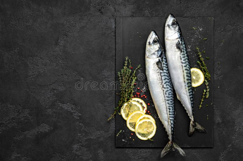 Mackerel. Fresh raw fish with ingredients for cooking, top view stock image