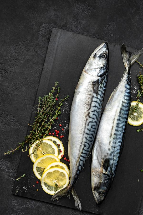 Mackerel. Fresh raw fish with ingredients for cooking, top view royalty free stock photos