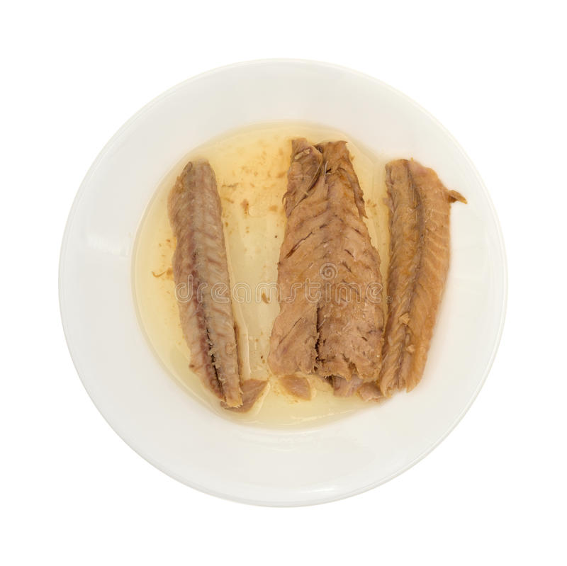 Mackerel skinless fillets in olive oil on a plate. Top view of skinless mackerel fillets in olive oil on a plate isolated on a white background stock images