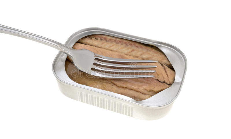 Mackerel skinless fillets with olive oil in a tin. Skinless mackerel fillets in olive oil in an opened tin with a fork atop the food stock photography