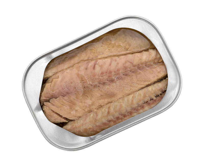 Mackerel skinless fillets with olive oil in a tin. Top view of skinless mackerel fillets in olive oil in an opened tin isolated on a white background stock image