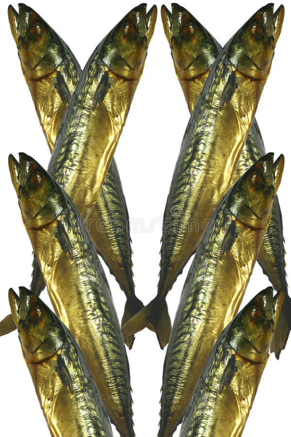 Download Mackerel Of Smoked, 8 Features Stock Photo - Image of dinner, clove: 18166298