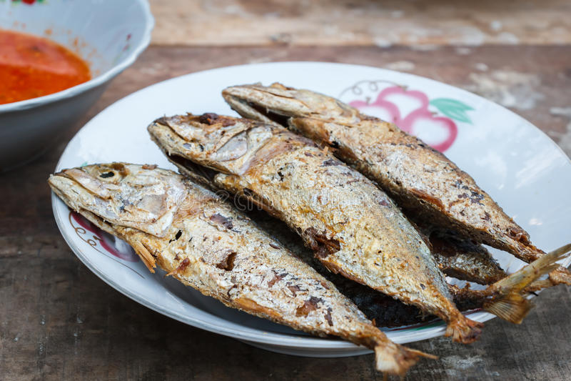 Mackerels. Fried Mackerel for lunch or dinner stock photography
