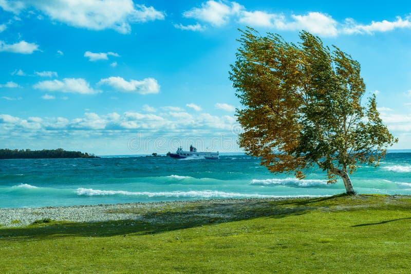 Mackinac勇敢波浪的海岛轮渡在一有风秋天天 免版税图库摄影