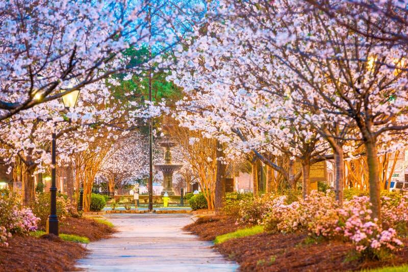 Macon, Georgia, U.S.A. fotografia stock libera da diritti