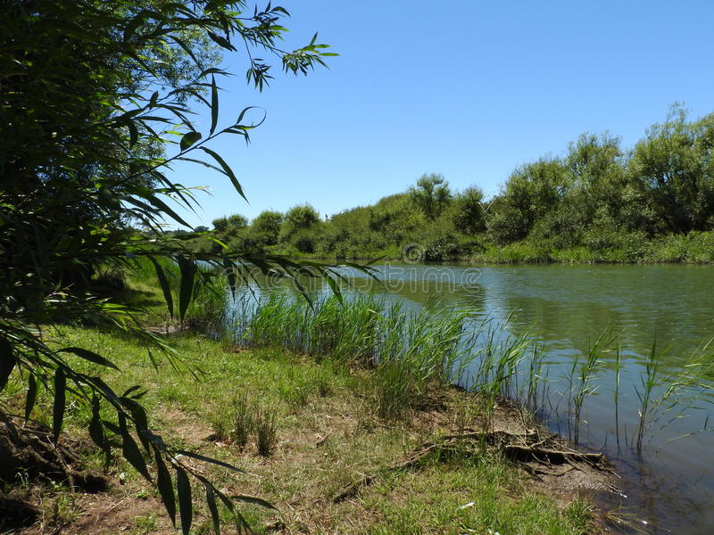 Macquarierivier, Longford, Tasmanige stock afbeeldingen