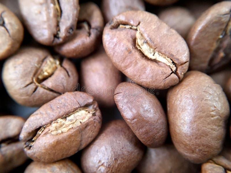 Macro étroit des grains de café photos stock