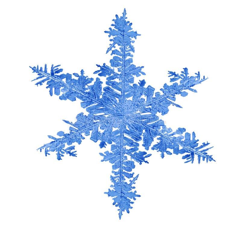 Macro aislada azul del copo de nieve fotografía de archivo libre de regalías