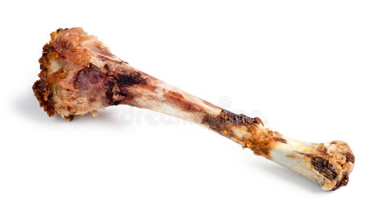 Macro aislada del hueso comido del palillo de pollo imágenes de archivo libres de regalías