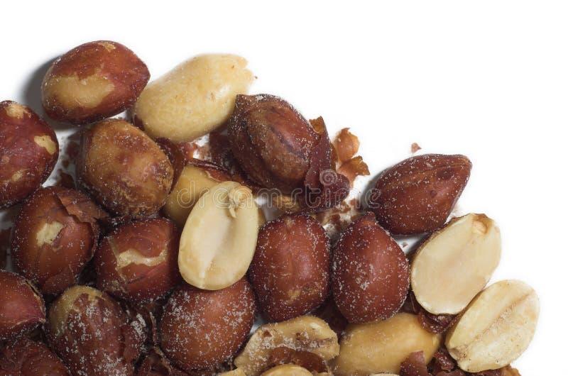 Macro arachides images stock