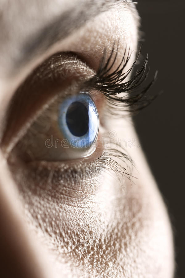 Macro on blue eye royalty free stock photos