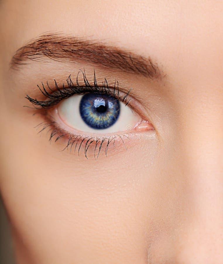 Macro bright blue eye of beautiful stock photos