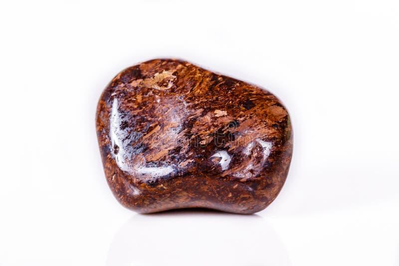 Macro bronzo minerale della pietra su fondo bianco immagine stock libera da diritti