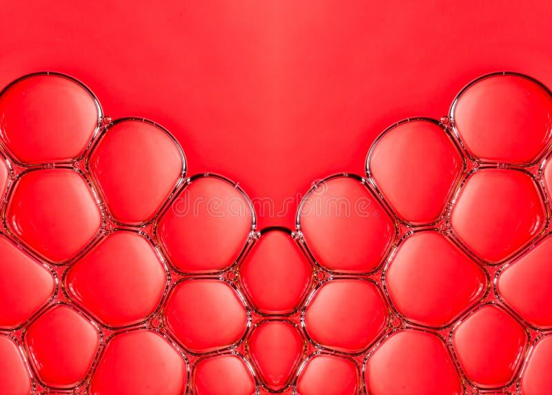 Macro bubbles in water stock photo