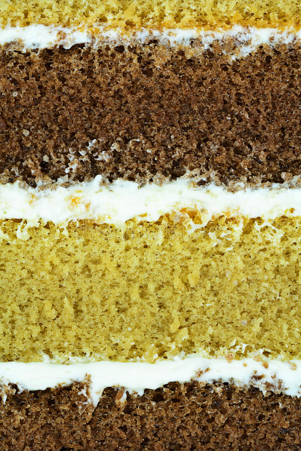 Macro of cake layer for food backround. Or concept stock photography