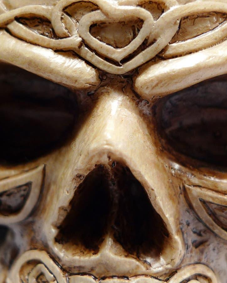 Macro celtica del fronte del cranio del Druid fotografia stock