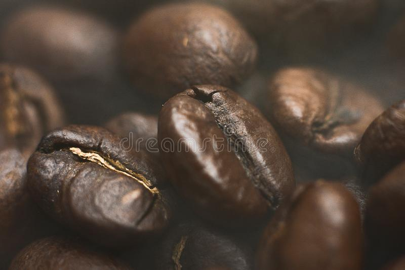 Macro chicchi di caff? Fondo del caff? Chicchi di caff? arrostiti Arabica fotografie stock