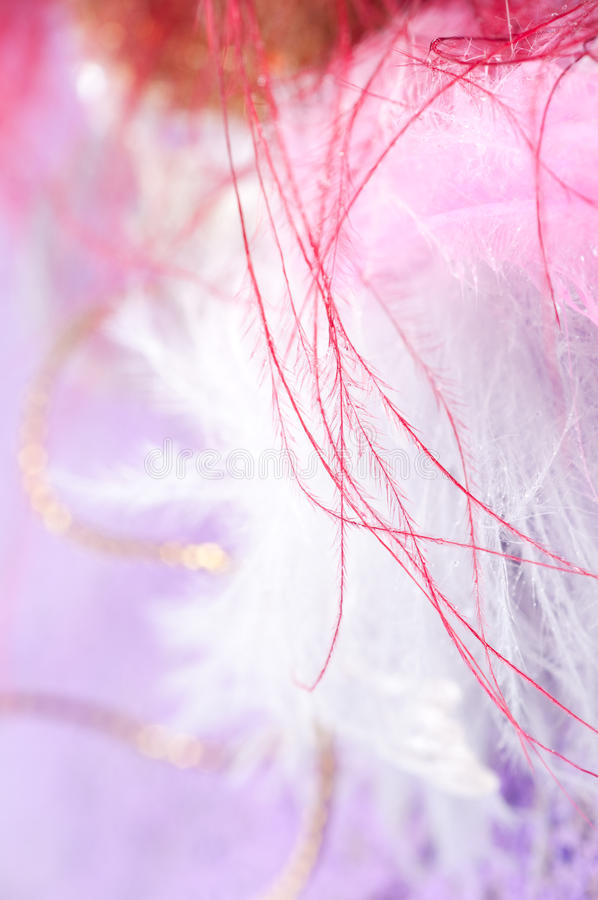 Macro clavettes photo libre de droits