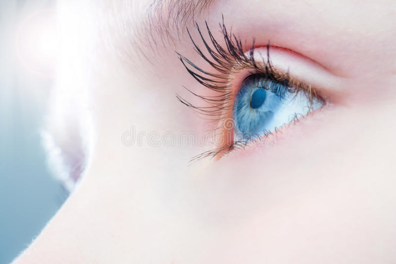 Macro close up of human eye. Macro close up of human eye with bright light in background stock photography