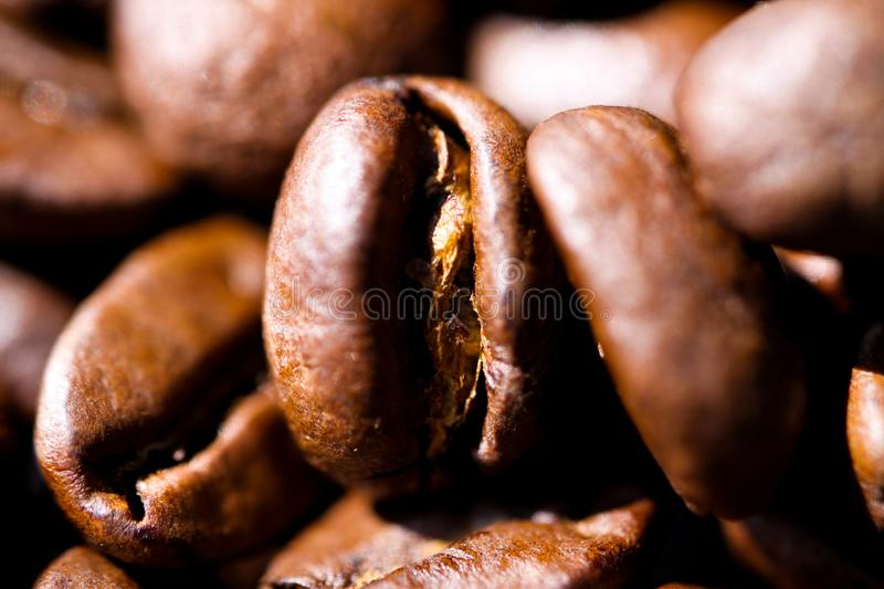 Macro close up of pile of roasted brown coffee beans in natural sunlight showing details of surface stock photos