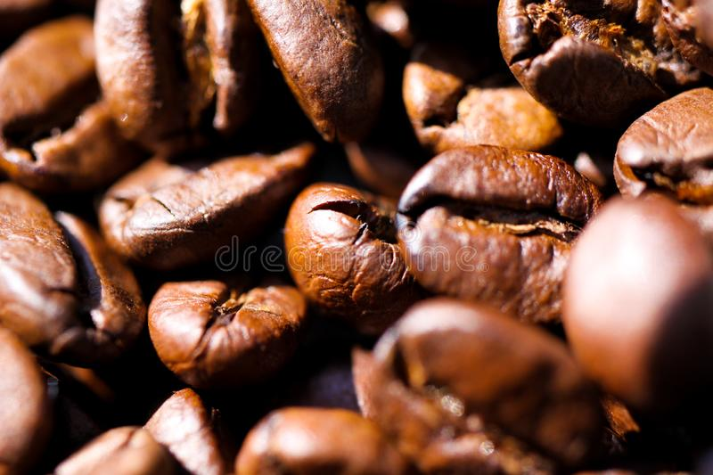 Macro close up of pile of roasted brown coffee beans in natural sunlight showing details of surface royalty free stock photos