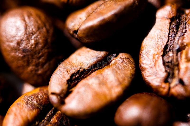 Macro close up of pile of roasted brown coffee beans in natural sunlight showing details of surface stock photography