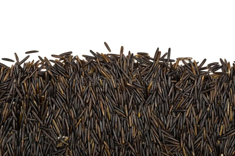 Macro close up of uncooked, raw, black wild rice grains texture border flat lay top view from above over white background stock photo