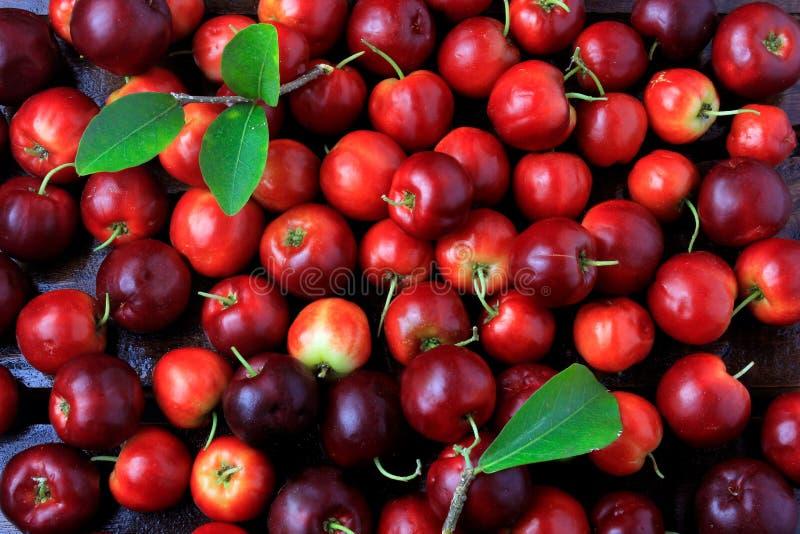 Macro, close-up van verse organische Acerola-Groep sappige en geselecteerde vruchten royalty-vrije stock foto