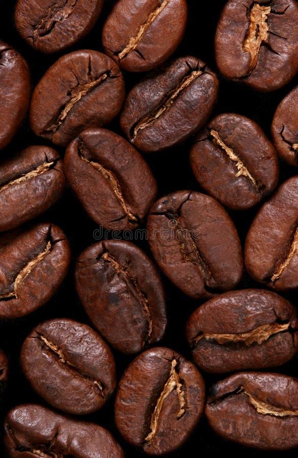 Macro coffebeansachtergrond stock fotografie