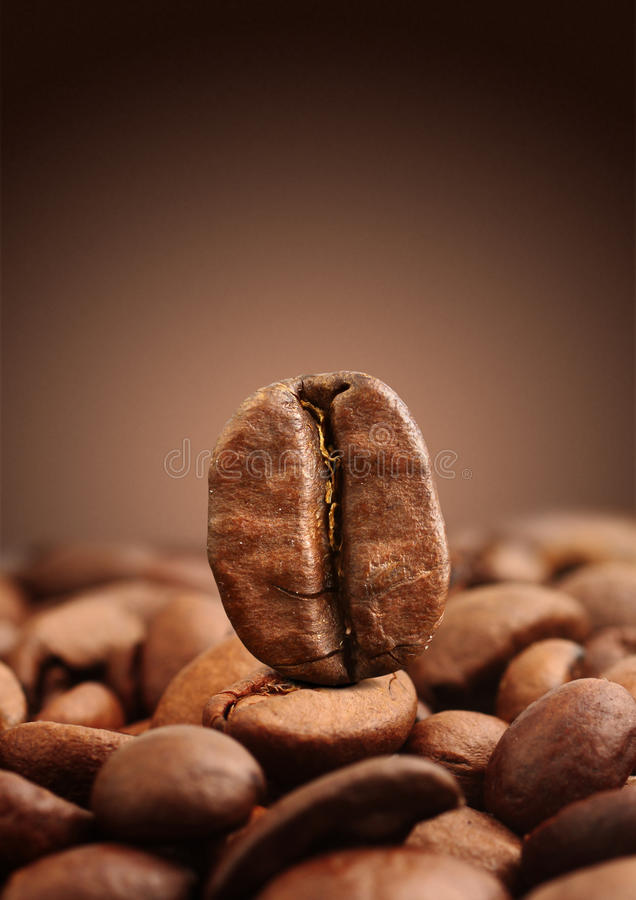 Macro of coffee bean on brown background royalty free stock image