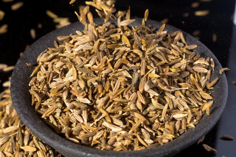 Macro collection, aromatic dried seasoning cumin close up royalty free stock photos