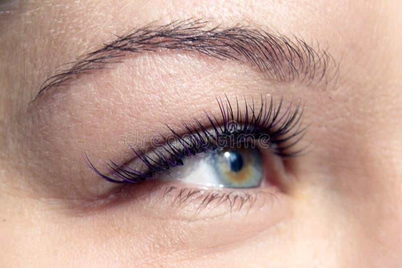 Macro colpo dell'occhio femminile con i cigli lunghi estremi fotografie stock libere da diritti