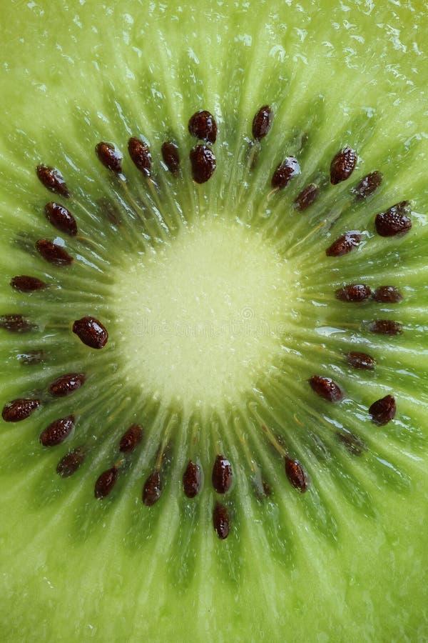 Macro colpo della sezione trasversale di Kiwi Fruit maturo fresco e succoso verde intenso, per struttura della frutta fotografie stock