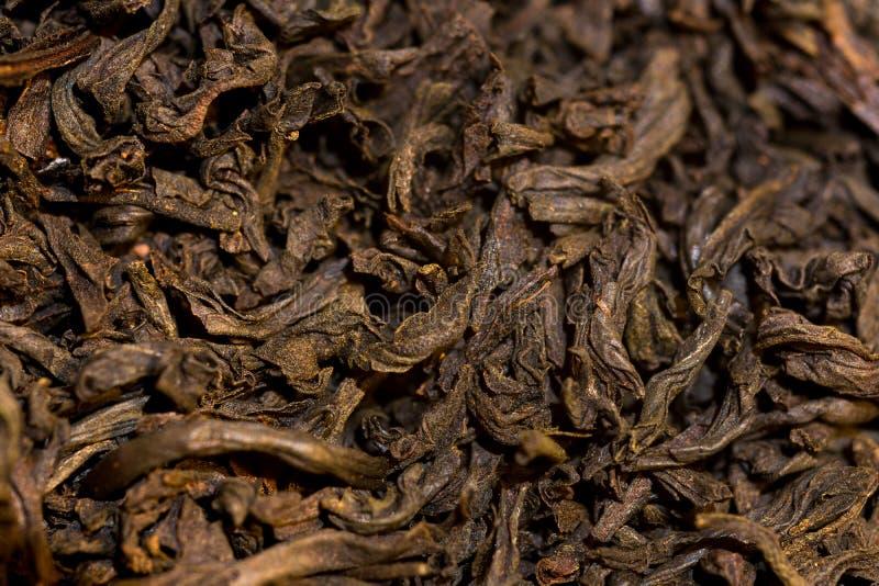 Macro colpo delle foglie di tè secche fotografia stock libera da diritti