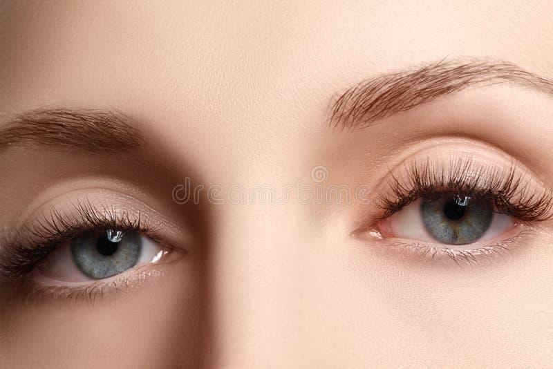 Macro colpo di bello occhio della donna con i cigli estremamente lunghi Vista sexy, sguardo sensuale Occhio femminile con i cigli immagini stock libere da diritti