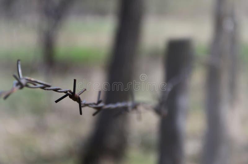 Macro colpo di un elemento di vecchio e filo spinato arrugginito con un fondo vago Il frammento di un recinto del villaggio di un immagine stock libera da diritti