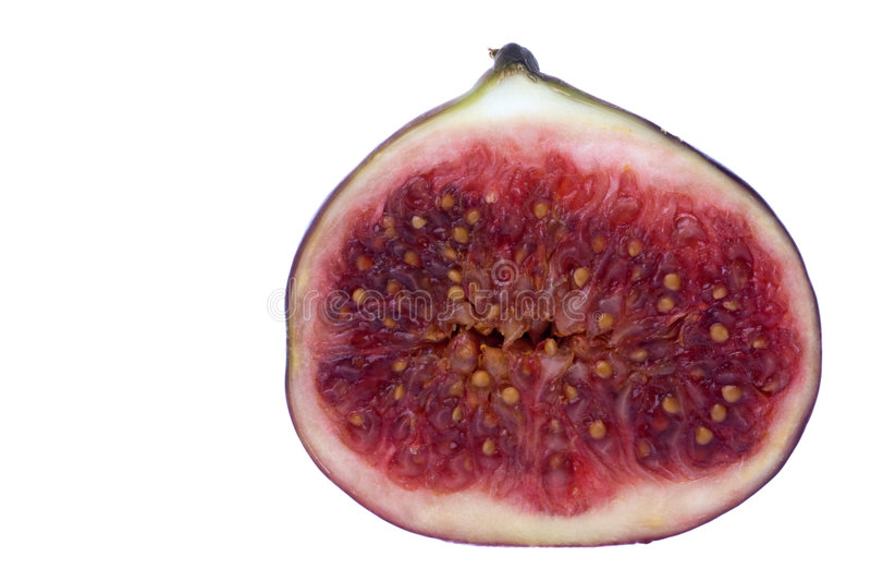 Macro cortado do figo isolado fotografia de stock