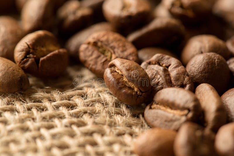 Macro d'ingrédients de Brown : étoile d'anis, bâtons de cannelle et grains de café Vue supérieure photo stock