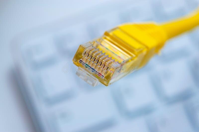 Macro d'un câble jaune de réseau photographie stock libre de droits
