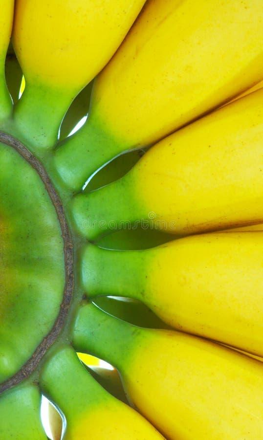 Macro da banana imagens de stock royalty free