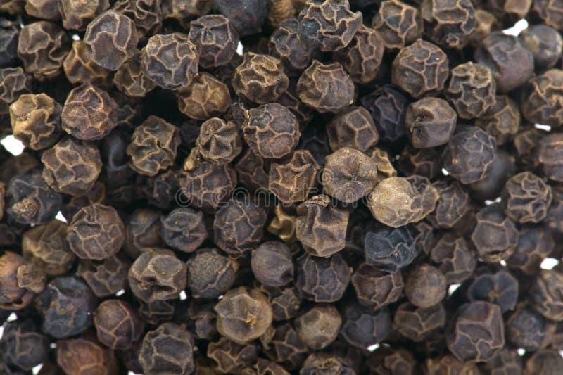 Macro da pimenta preta imagem de stock royalty free